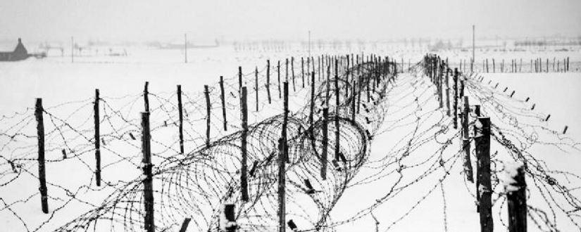 Alambre de espino cerca de Menin-Francia, Enero de 1940 - Fotografía de libre disposición del Reino Unido