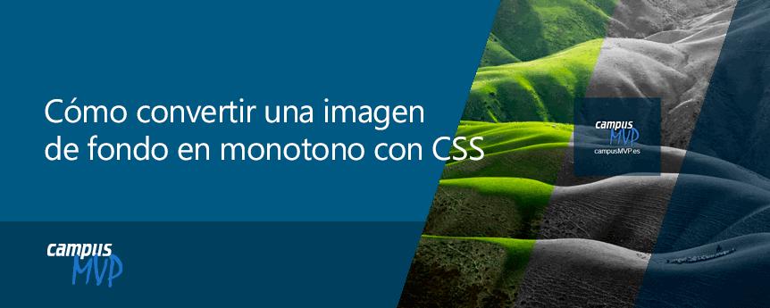 Ejemplo del resultado de convertir una imagen en monocromo con CSS